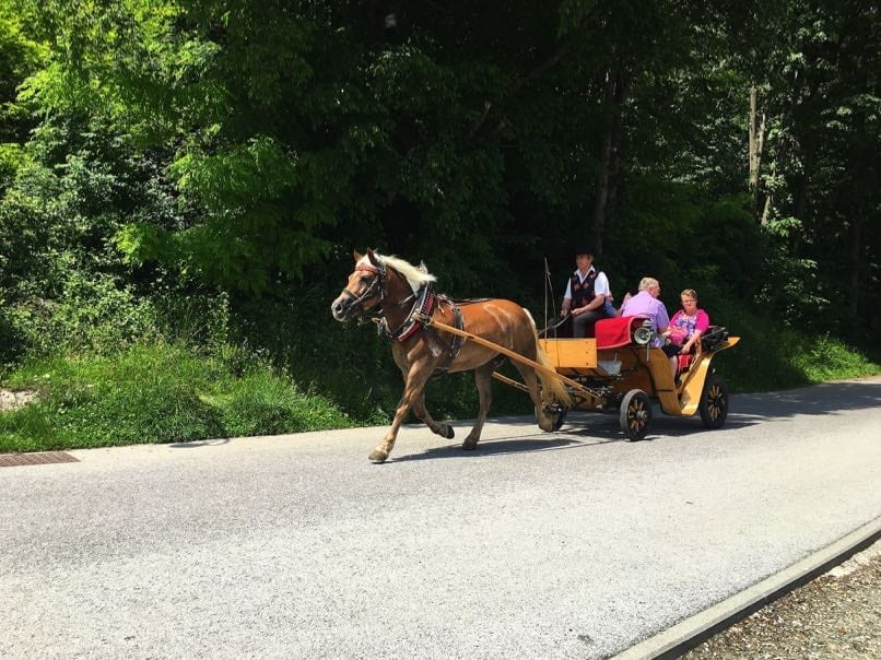 Horse&Carriage, Bled